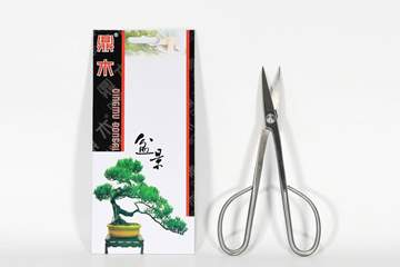 Picture of Bonsai trimming scissors mm. 210 - alloy steel