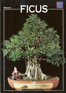 Immagine di Guida al bonsai di Ficus