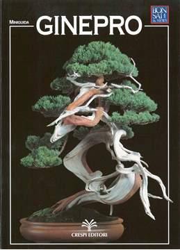 Immagine di Guida al bonsai di Ginepro