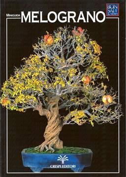 Immagine di Guida al bonsai di Melograno