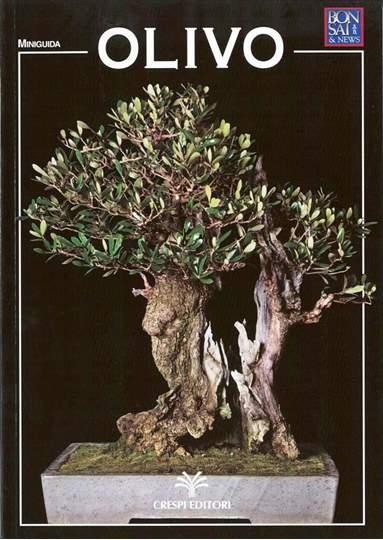 Picture of Guida al bonsai di Olivo