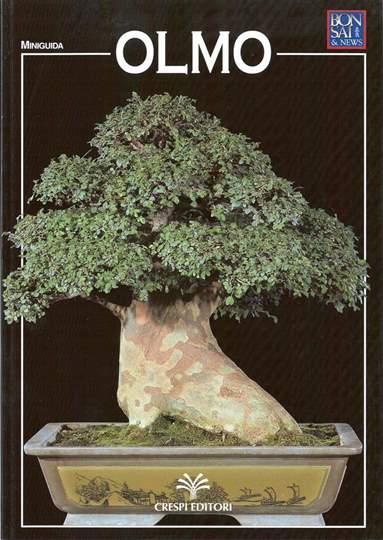 Picture of Guida al bonsai di Olmo