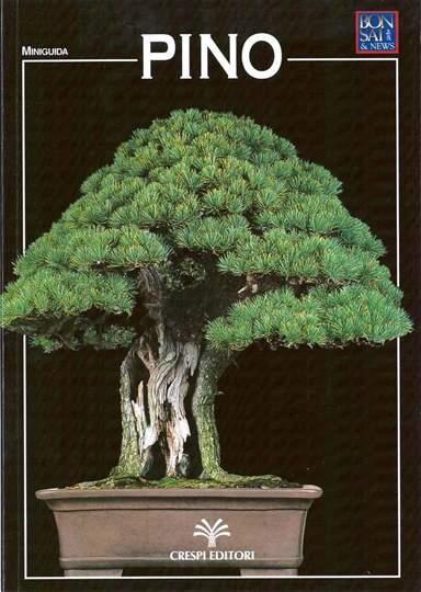 Picture of Guida al bonsai di Pino