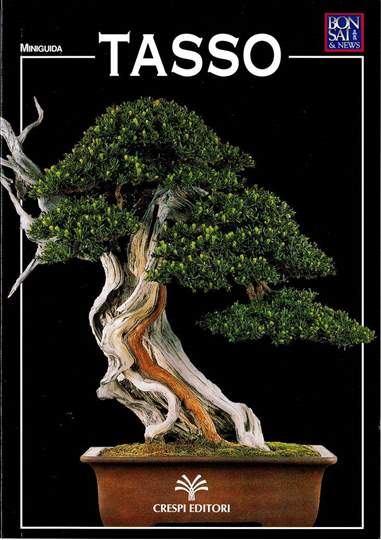 Immagine di Guida al bonsai di Tasso
