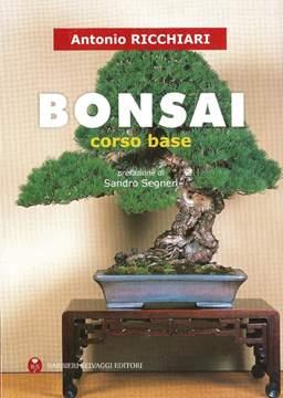Immagine di Bonsai corso base - Antonio Ricchiari
