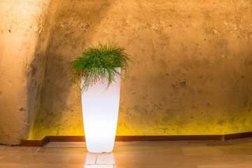 Picture of Vaso Luminoso Stilo Round cm. 70