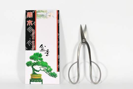 Picture of Forbice bonsai per rametti a manico curvo mm. 200 in acciaio satinato