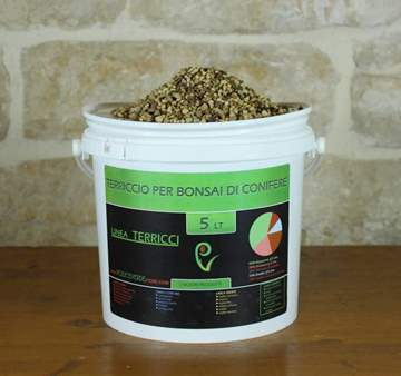 Terriccio bonsai conifere