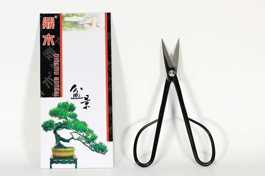 Immagine di Forbice bonsai per rametti semi-professionale mm. 210