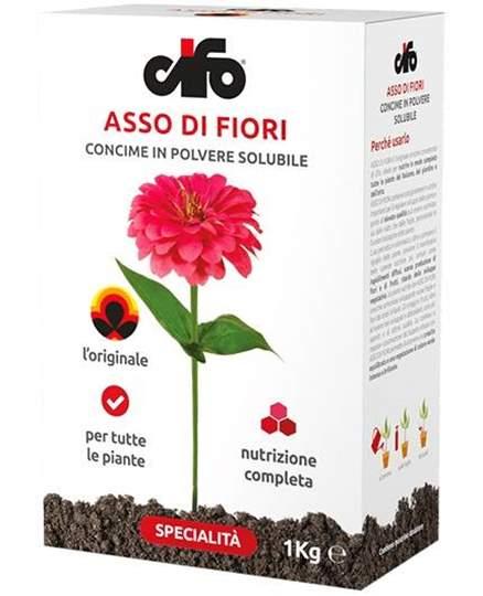 Immagine di Concime Universale Asso di fiori NPK 20-20-20 da 1 kg.